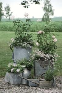garden galvanized